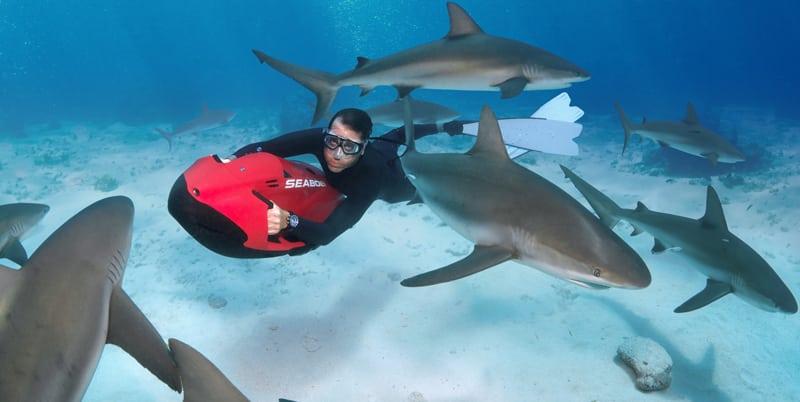 Дайвинг среди акул вместе с Seabob