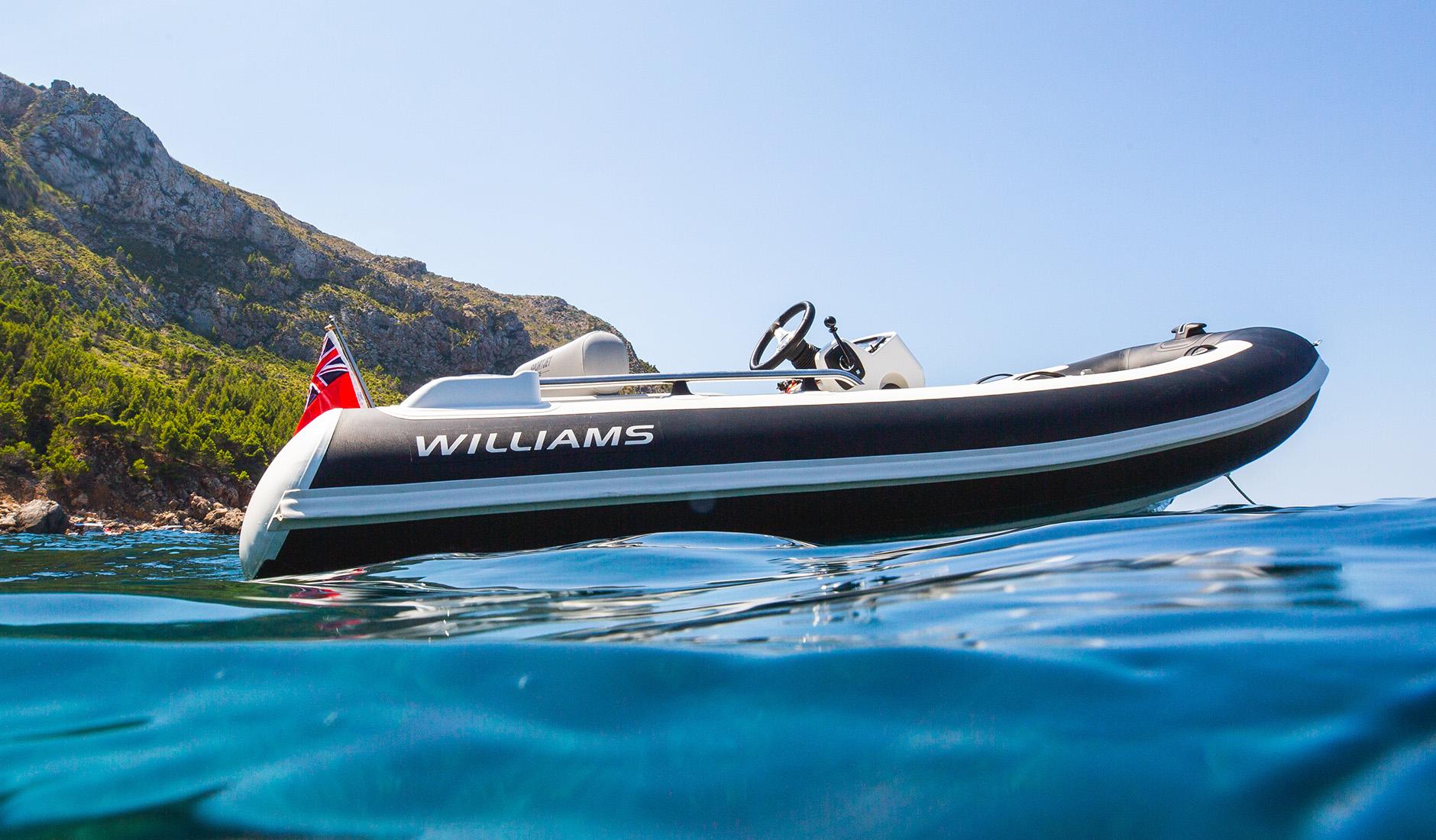 Williams Tenders Sportjet 345 Фото  1